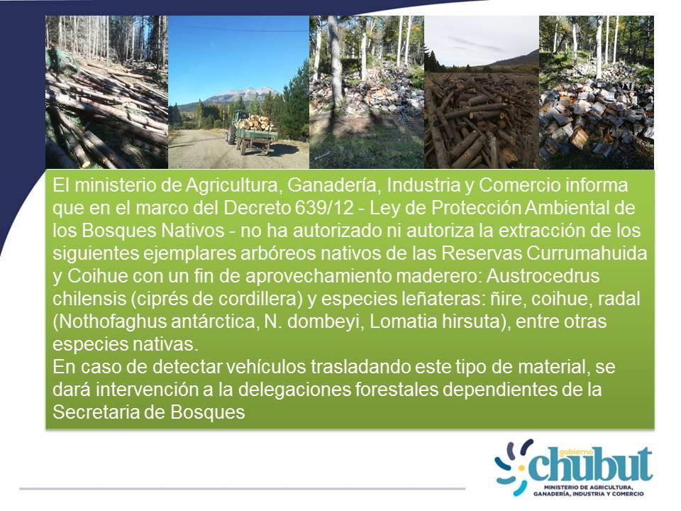 #Forestación Atención #ComarcaAndina  Rige #prohibición de extracción de especies #nativas 🌳 de las reservas forestales #Currumahuida y #Coihue 👇 https://t.co/F0Vhzmxzq9