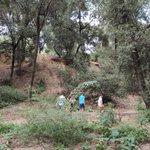 Image for the Tweet beginning: Estudiem la biodiversitat del bosc