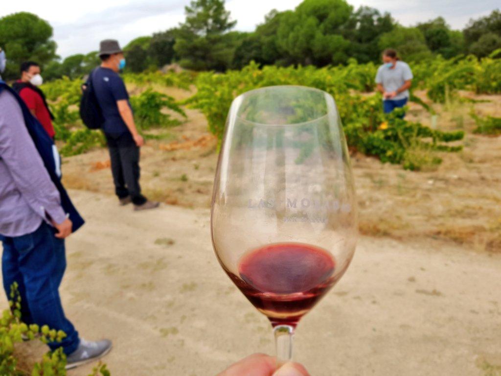 Visita a la Bodega @LasMoradasdeSM, de @VinosdeMadridDO, para ver la influencia del suelo en los #vinos Situada en un precioso paraje dentro de @MadridRutasVino Dentro del Curso de Enología y Cata de Vinos de @FormacionUCM  #vino #Formación #Madrid #UCM #Complutense https://t.co/IP6aZe3Gm8