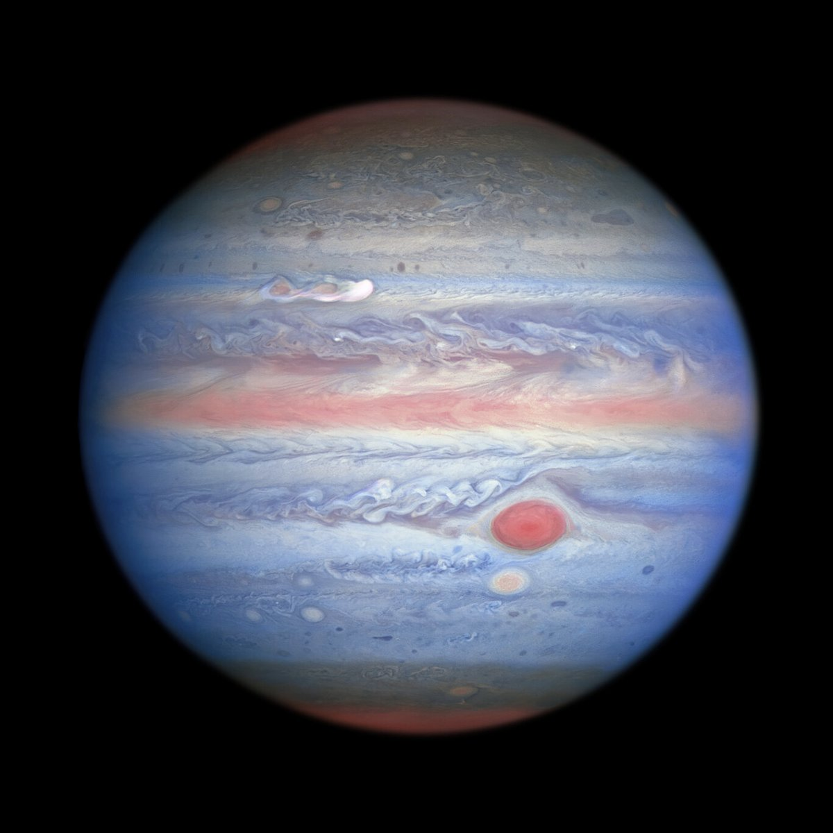 📸 #Jupiter: as you might not have seen it before. These observations in ultraviolet/visible/near-infrared light made by the NASA/ESA @HUBBLE_space Telescope on 25 August are giving researchers an entirely new view of the giant planet 👉 https://t.co/2pLURdg34R @esascience https://t.co/Gj0YYtKwjl