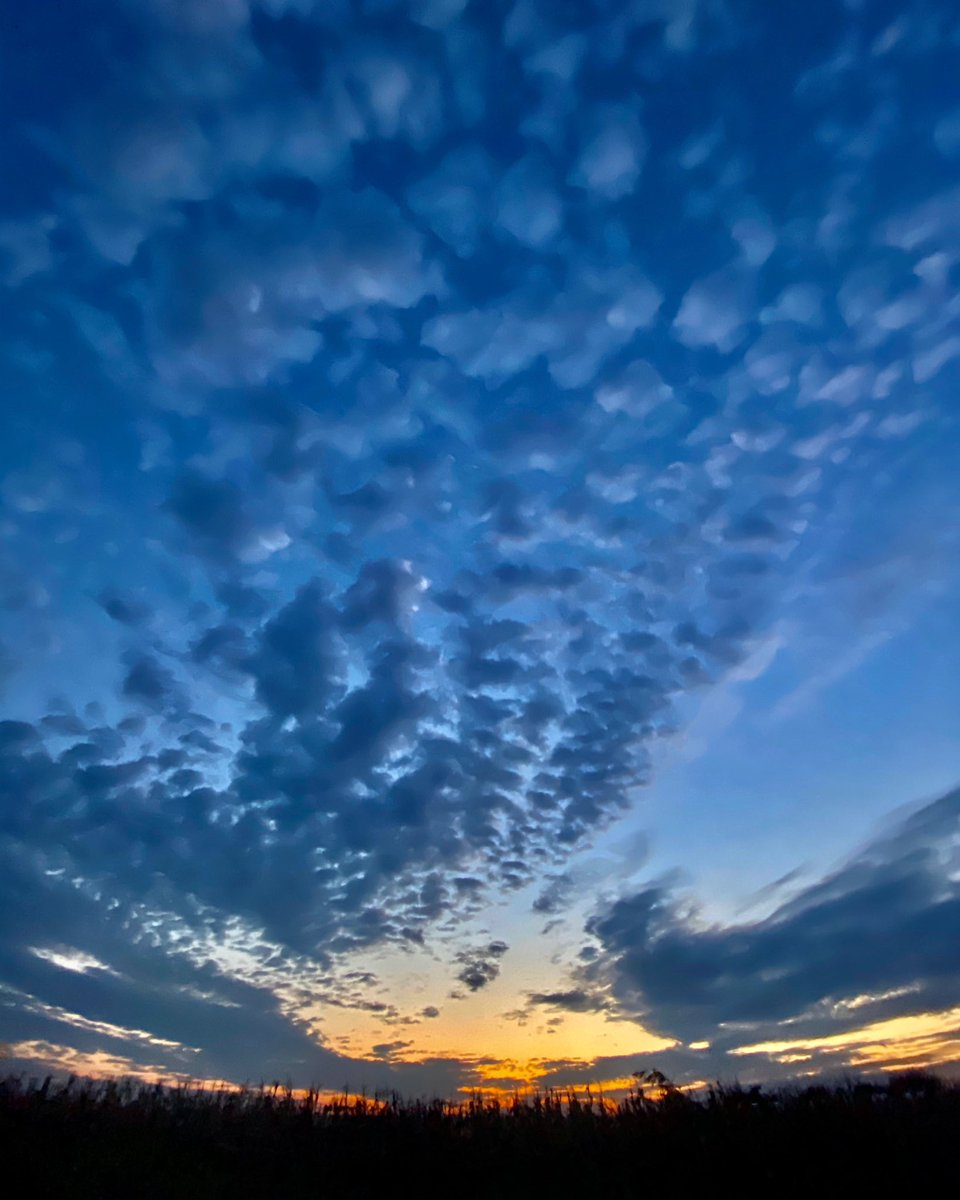 #sky #sunset #skyphotography #skylovers #skyscape #skywatcher #sky_perfection #nebo #zalazak #serbia #srbija #ig_serbia #ig_srbija https://t.co/7i7PpYwb4V