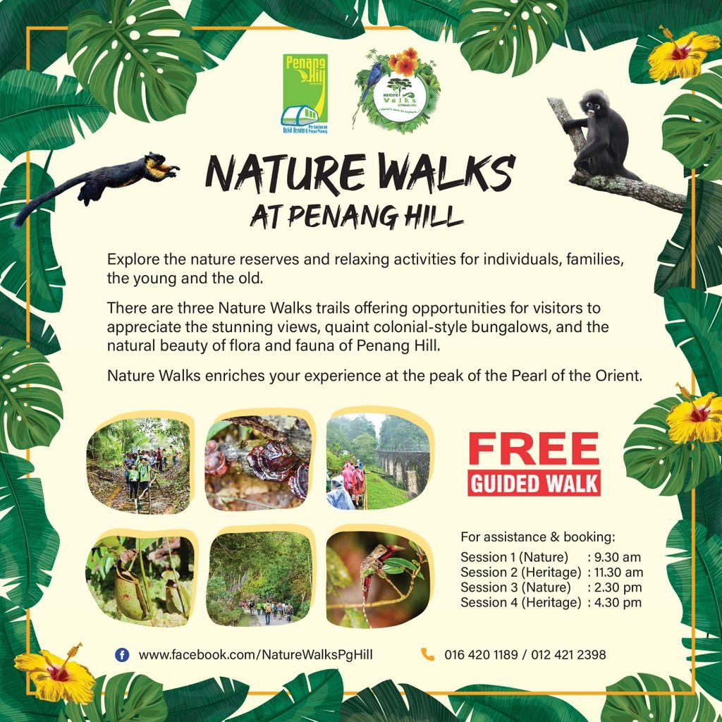 2/2: Take the free guided nature walks and learn more about this famous spot's natural landscapes, her flora and  fauna and her intriguing architecture, and history. #dreamnowtravellater #penang #georgetown #penanghill #naturewalks #nature #floraandfauna https://t.co/7Q0qoGz48y