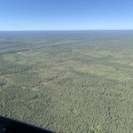 Image for the Tweet beginning: Got to fly around the