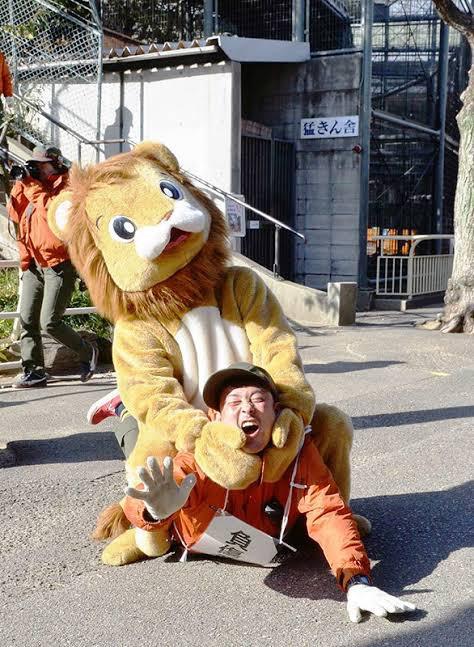 対猛獣訓練で過酷なのといえば天王寺動物園の関節技をかけてくる猛獣