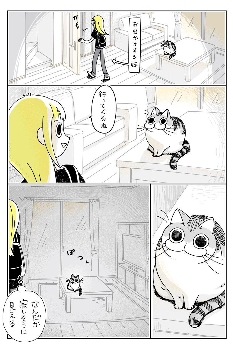 お出かけする妹とネコ
