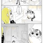 猫を飼っているとありがち?お出掛け前についハグをしてしまい服が・・・!