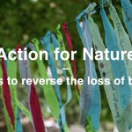 "Image for the Tweet beginning: ""ACT ON NATURE"" demand hundreds"