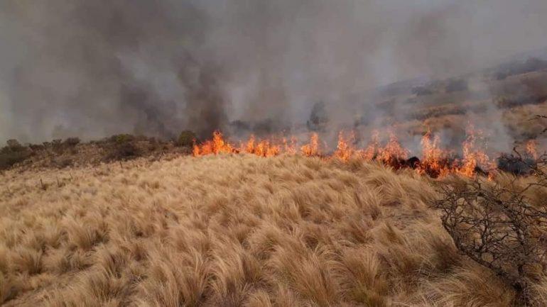 Córdoba #Corte de #RutaN158 km 202 (altura de Gral. Cabrera) y en #RutaE98 (Camino del Cuadrado), a la altura del km. 30, donde se registran focos de incendio de pastizales. Precaución  @ernestoarriaga @VTVinfo @APTTA_ https://t.co/AnHKmn6tlP
