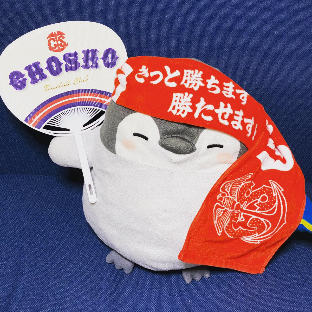 浦学ファンの方からエールを頂けた✨  嬉しいな😊  関東大会で当たったら発狂するな笑 2012年秋関東大会のリベンジだ💪 #銚子商業 #浦和学院