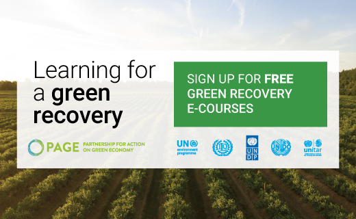 Let's #BuildBackGreener from #COVID19 and the #ClimateCrisis. Learn  about green recovery from leading experts from @UNDP @UNEP, @ilo, @UNIDO & @UNITAR. Register for free #onlinelearning here:  https://t.co/XTRx5SijiN #ClimateWeekNYC #UNGA https://t.co/8aruimX89r