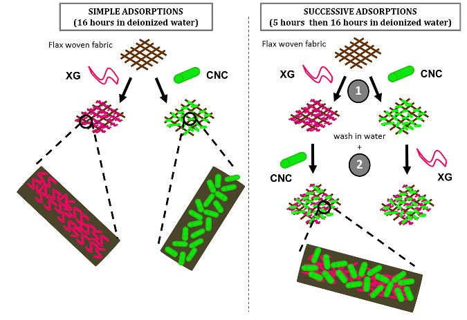 Paper #20-40 describes the effecto of adsorption of xyloglucan and cellulose nanocrystals on natural fibres by @JulienBras and colleagues. In Carbohydr. Polymer https://t.co/hOVOpMDVvp https://t.co/CNGDYm0W6k