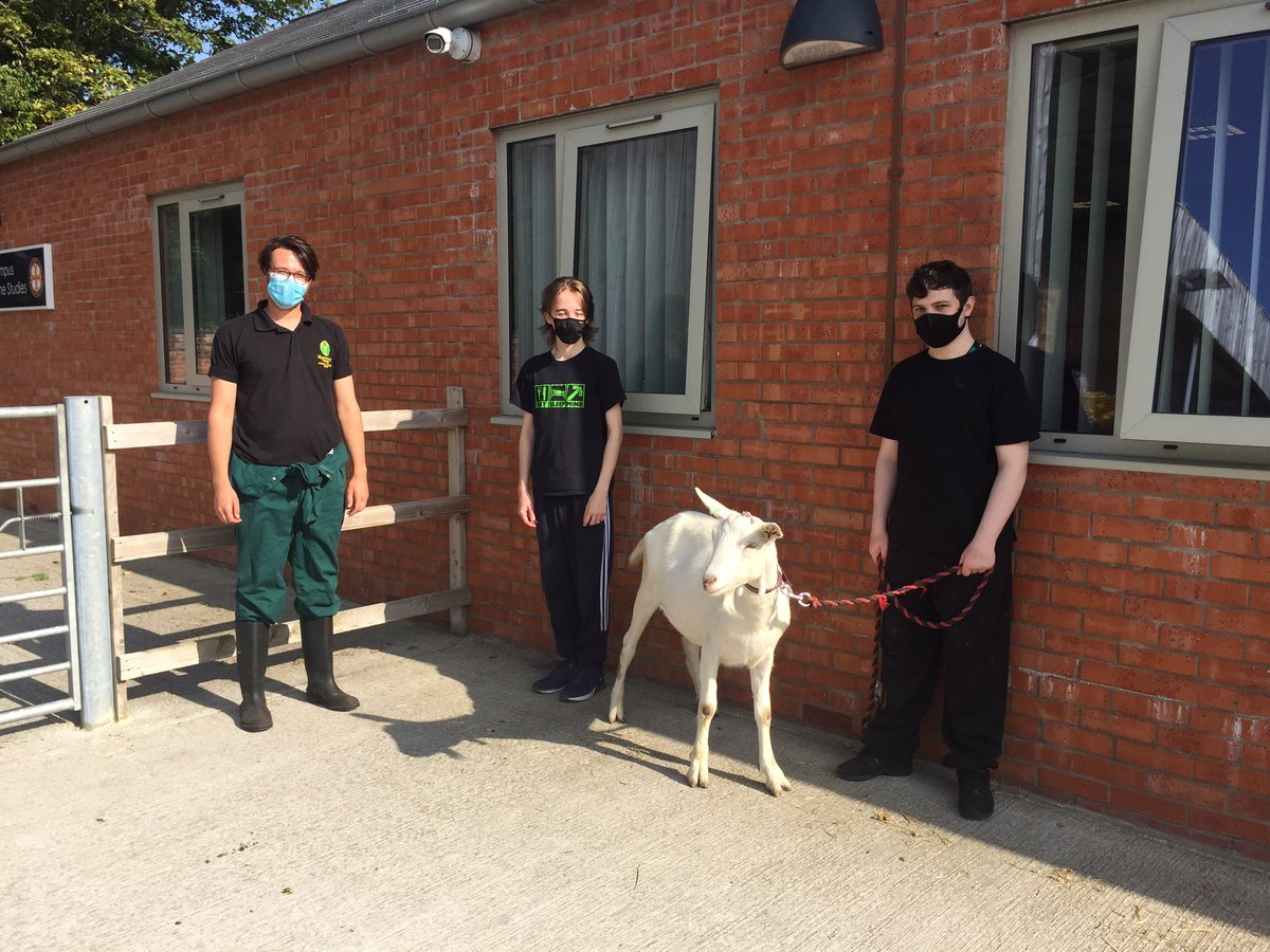 Goat Walking! 🐐 @CroxtethCampus @MyerscoughColl @My_Animals #loveourcolleges https://t.co/4yiwmXev1w