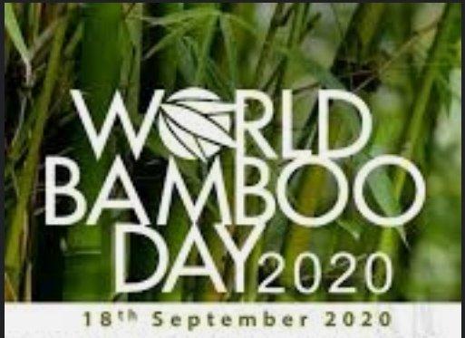 अब बांस से बने बिस्कुट खा सकेंगे आप! #विश्व_बांस_दिवस की बधाई #bambooday #WorldBambooDay #WorldOzoneDay #WorldEnvironmentDay #WorldBambooDay2020 @Tripathidk1 #environment #BoycottBollywood https://t.co/f9sh6CgQ4E