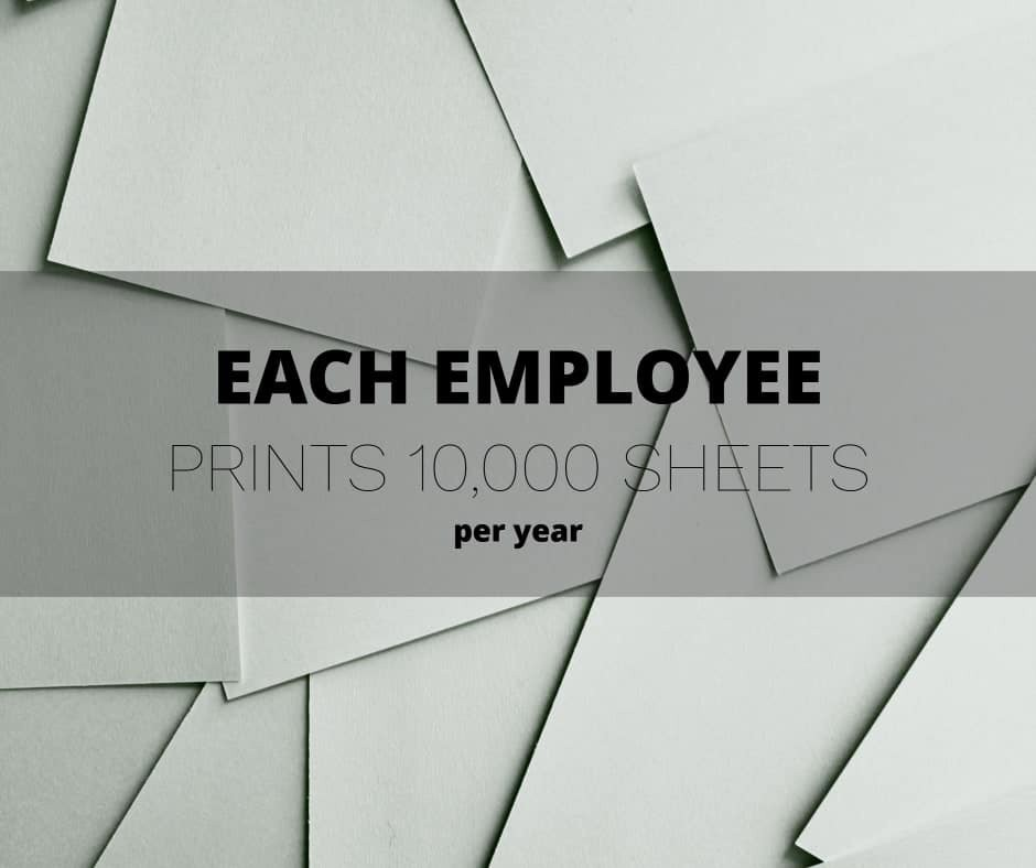 Many businesses aren't aware of the print waste staff create.  Find out more 👉 https://t.co/cz7wtrc8FV  #eco #Officeprint #CostManagement https://t.co/7BdEd0ajic