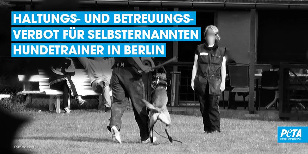 Erfolg! Eine #Whistleblowerin meldete uns einen selbsternannten Hundetrainer: Als Erziehungsmethode empfahl er beispielsweise freimütige Tritte und Schläge. Die in seiner Obhut befindlichen Tiere waren verschüchtert, ängstlich und wiesen teilweise offene, unversorgte Wunden auf. https://t.co/IxW0aePgiW