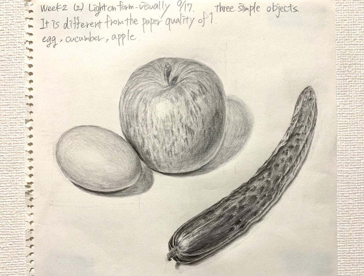 Week2 simple object drawing #scientificillustrationdistanceprogram #sidp #tomato #pencildrawing #illustration #illustration #scientificillustration #サイエンスイラスト #イラスト #絵 #solanumlycopersicum #サイエンスイラストレーター #scientificillustrator #illustrator https://t.co/MAY2WCuxvX