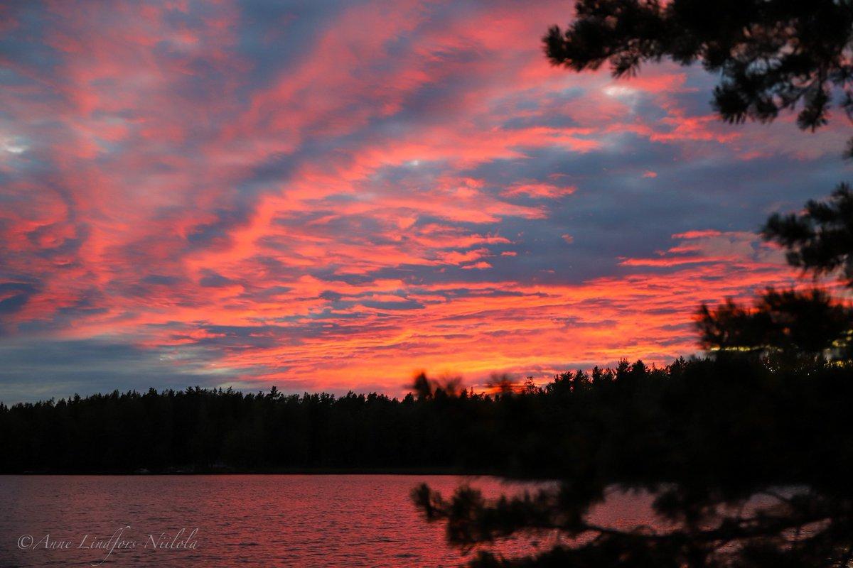 Hyvää viikonloppua sullekin 😍#sunsetphotography #nofilter #naturelovers #finlandphotolovers https://t.co/CZIl45O3Se