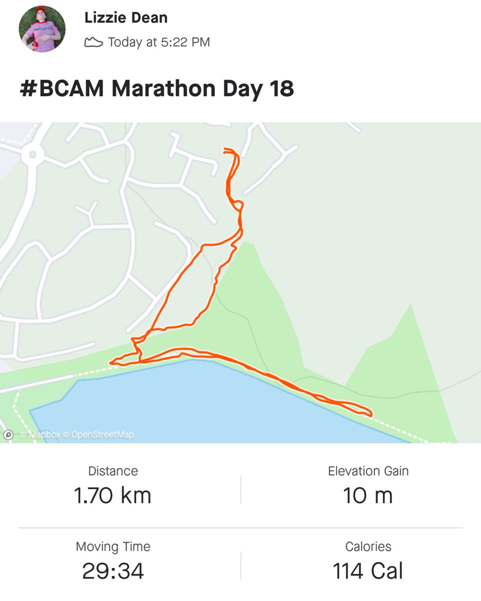 #BCAM Marathon Day 18 ✅ 1.1 miles today 📈 19.2 total 🚶🏻‍♀️ 7.0 to go.  Avoided the downhills today, but my knees remember yesterday and haven't forgiven me yet  👉🏻 https://t.co/rlJWuL3ZJb to donate to @CureLeukaemia & help keep hope alive for #BloodCancer patients + their families https://t.co/azxEGsmqIZ