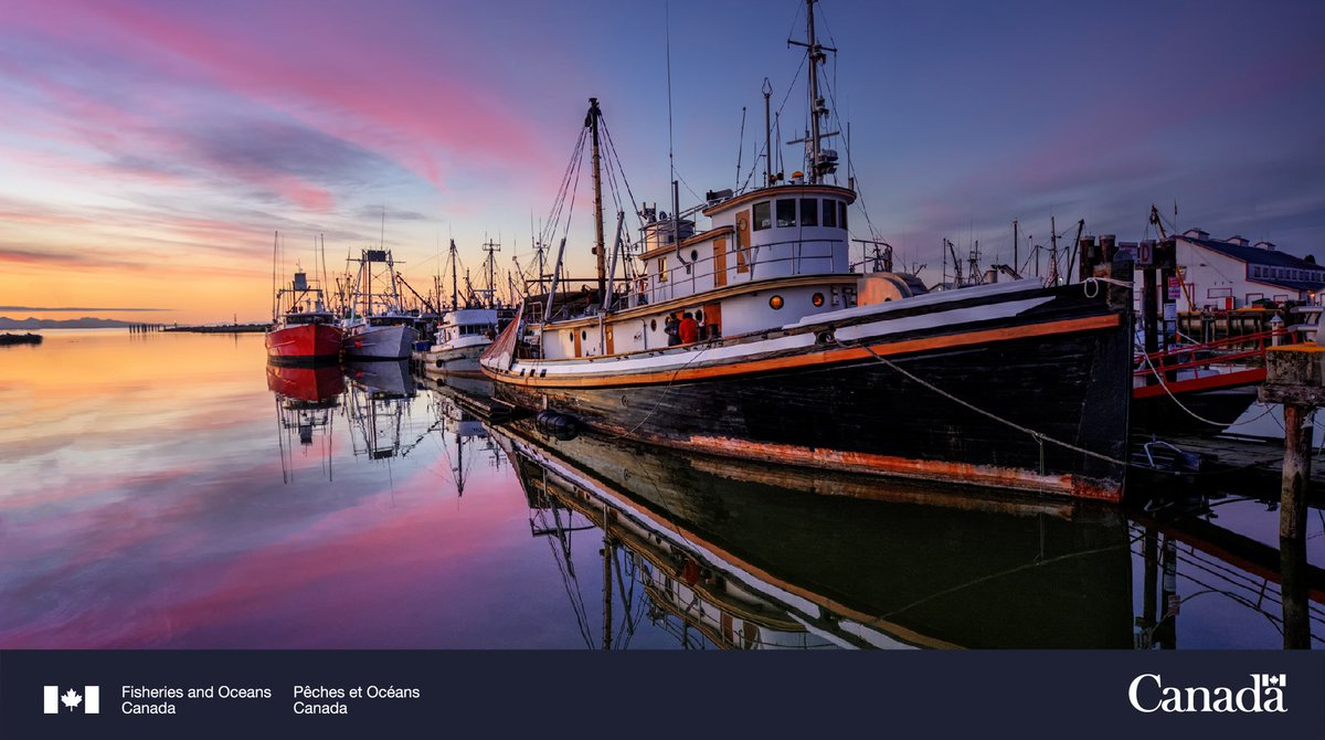Statement from Minister Jordan regarding the ongoing tensions in Nova Scotia's fisheries: canada.ca/en/fisheries-o…