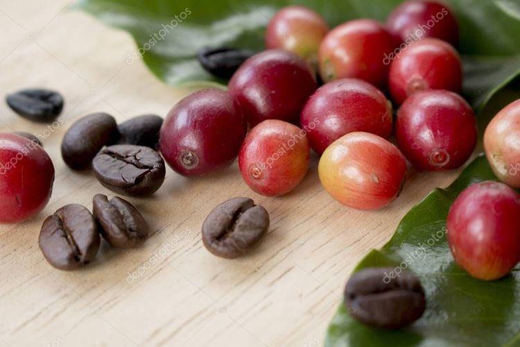 そう言えば「珈琲」と言う漢字は、津山藩の蘭学者 宇田川榕菴(うだがわ ようあん)が発案したもので、コーヒーの赤い実がかんざしに似ていたので、髪に挿す花かんざしの意味の「珈」と、かんざしの玉を繋ぐ紐の意味の「琲」を合わせて「珈琲」と名付けたんだとか。なんだか美しい名前だな。