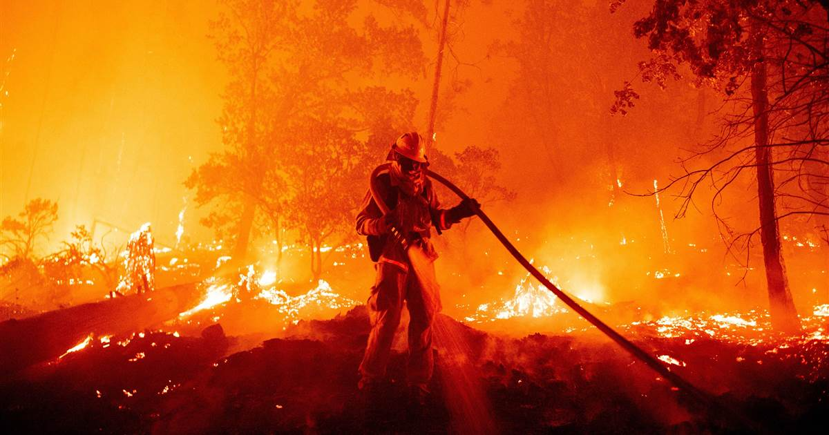 Wildfires in the US, Australia and Siberia have driven home how climate change is already threatening to destroy ecosystems in various parts of the world. https://t.co/8uRhsZZBSK https://t.co/dOfpcZogk1