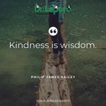 """Image for the Tweet beginning: """"Kindness is wisdom."""" . . . . . . . #philipjamesbailey #drlepora #business #executive #executivecoach #leader #leadership #leadershipdevelopment #success #goal #change #growth #motivation #inspiration #personaldevelopment #lifecoaching #dailyquotes"""