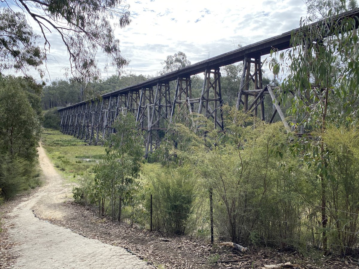 Just a cracking day for a run in #lovegippsland Our historic trestle bridges on the East Gippsland Rail Trail are certainly worth preserving for future generations #auspolrunners @swrighteconomy @ALeighMP @sclark_melbs @TimHammond1 @Clarke_Melissa @lucybarbour @kellazzaro https://t.co/WQz0768uau