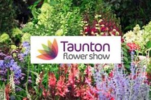 """Taunton Flower Show is an annual flower show held in Vivary Park, #Taunton, #Somerset, England. It has been described as """"The Chelsea of the West"""", and attracts around 17,000 visitors over its two days.  https://t.co/i3qZo2vFUz  Friday 6th and Saturday 7th August 2021  #TFS2021 https://t.co/aa8E9c8vli"""