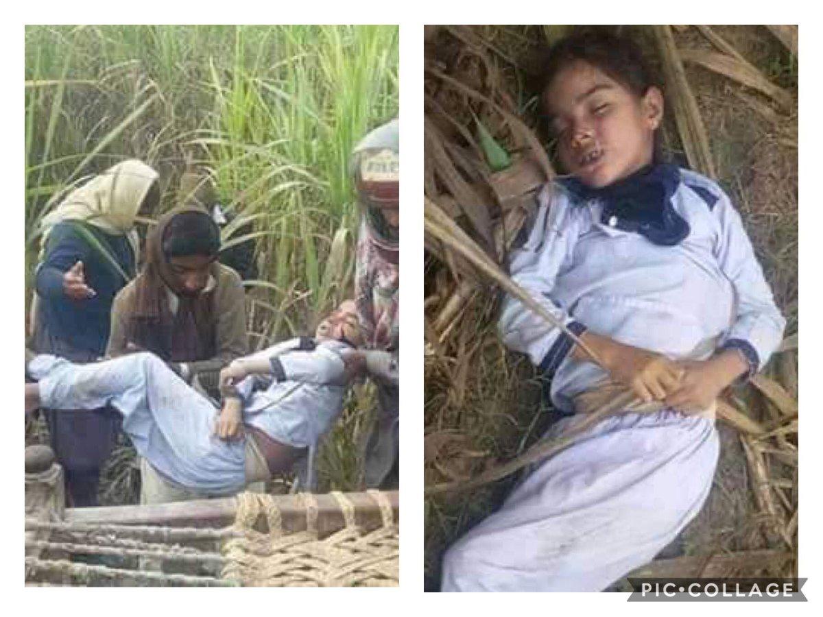 سو بار ایسے مجرم کو کھلے عام پھانسی دینا کم ہے۔ ایک اور معصوم بچی جنسی زیادتی کا شکار ہوگئی، سکول وردی میں تقریبا 10 سالہ بچی کی لاش رحیم یار خان کے موضع چندر فصل سے برآمد ہوئی. پاکستان میں معصوم بچے اور بچیوں کے ساتھ زیادتی کے واقعات میں دن بہ دن اضافہ https://t.co/t6sawudVST