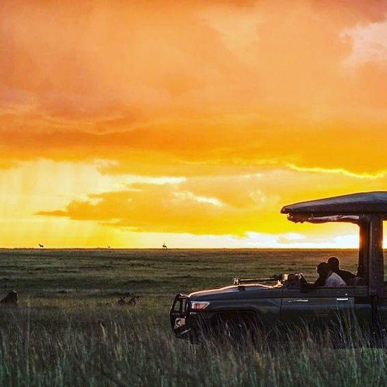 Sunrise treatment at the vast landscape of Serengeti. We can meet your safari plans & expectations Talk to us today/ safaris@oksafaris.com Visit/ oksafaris.com ............................................. #tailormadetours #loiclagarde #beautifuldestinations