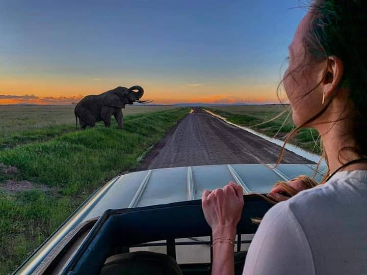 Travel As Much As You Can  As Far As You Can As Long As You Can Life Is Not Meant To Be Lived In One Place #Travel #Safarilife #Tanzania #DiscoverAfrica #TourAfrica #NatureBeauty #Explore #Destination #AfricanSpecialist #WildlifeTour . Request for a quote https://t.co/YczC08kgkw https://t.co/z92MxlZ8cX
