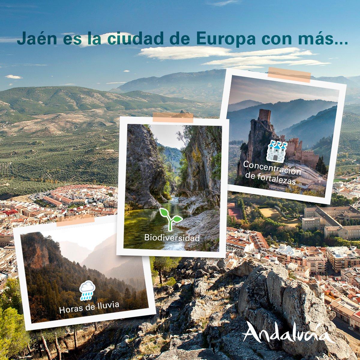 #ViveAndalucia | Jaén es un paraíso pero hay una cosa por la que destaca sobre el resto. ¿Sabes cuál es? 🤔  Responde en un comentario con la respuesta que crees correcta y su emoji correspondiente: 🌧🌱🏰 #Jaen https://t.co/U8Q5qtPCVA