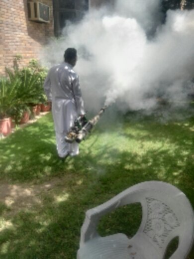Taking massive measures to overcome Dengue in Islamabad. Let's join hands to make a #DengueFreeIslamabad together! 🙏💚🇵🇰🇵🇰