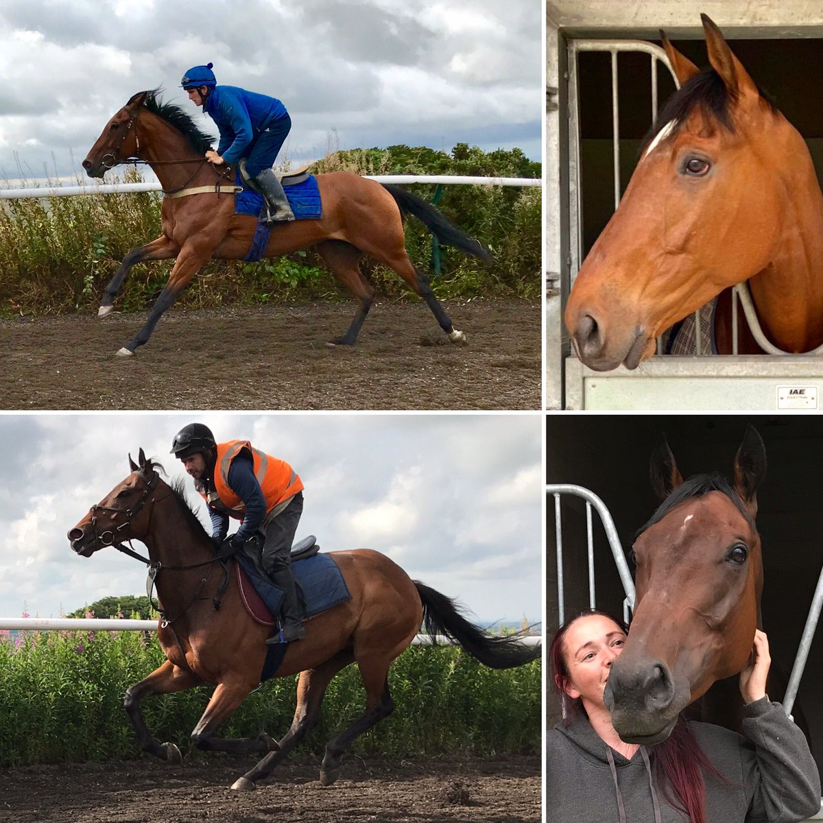 We're @ayrracecourse with our 2 superstars Nicholas T(top) & Euchen Glen, @StottKevin & @PMulrennan ride! #AyrGoldCupFestival