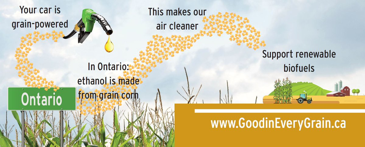 The CFS puts needless regulatory burden on farmers and the important role that Ontario-grown corn and locally produced ethanol plays in reducing carbon emissions. gfo.ca/news-releases/…