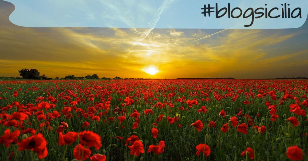 """""""La vita si misura attraverso attraverso i momenti che ci lasciano senza respiro"""" M. Angelou  Buonasera da #blogsicilia"""