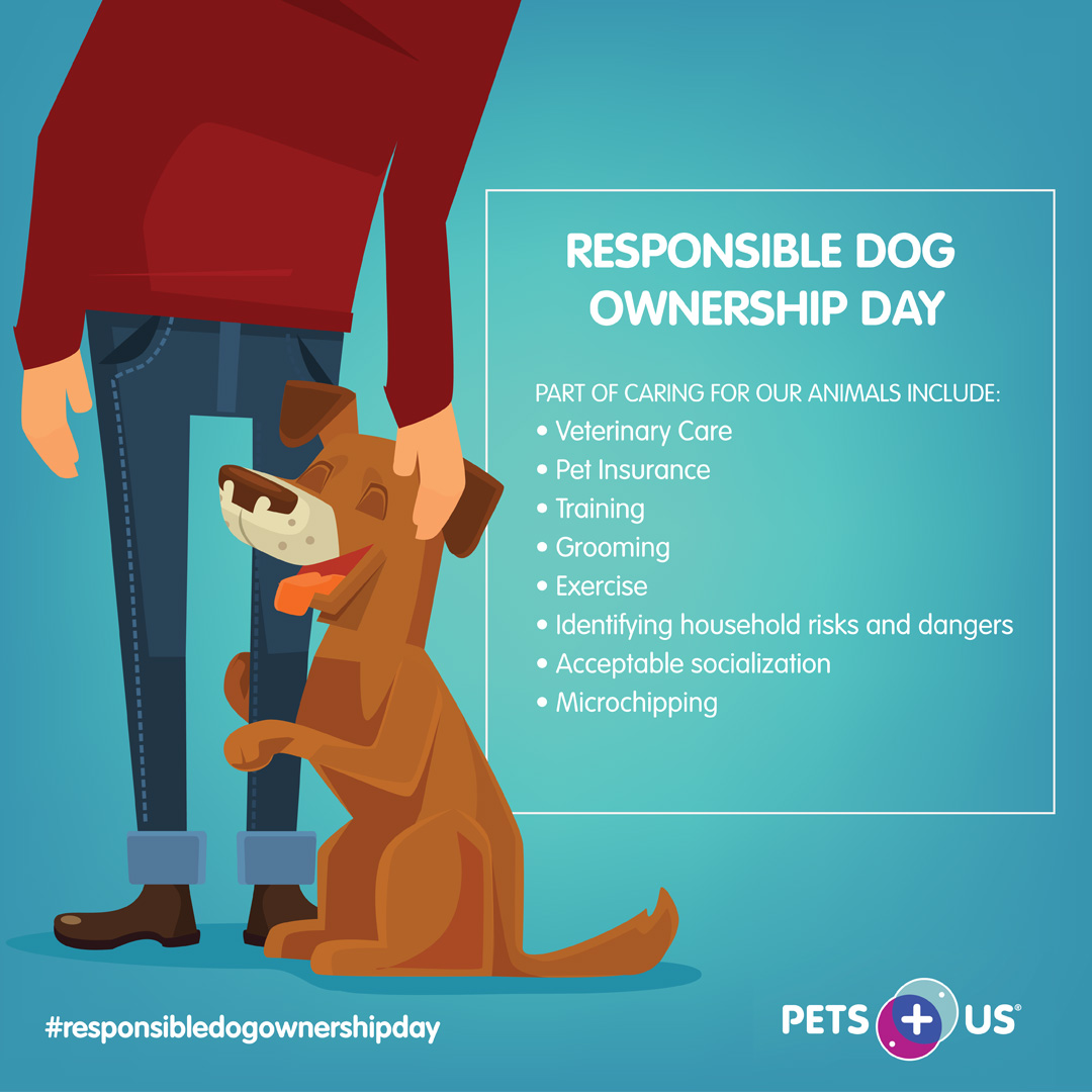 Today is #ResponsibleDogOwnershipDay! Proper veterinary care, nutrition, exercise and enrichment are all important parts of being a good pet parent 🐾 https://t.co/mM4HjGaTXJ https://t.co/APAoh74uWV