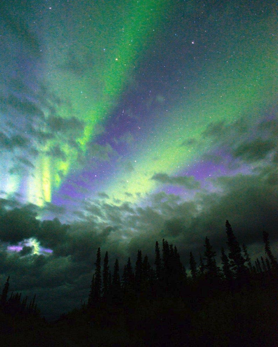 Have you seen them? Beautiful Contemporary Art Print Northern Lights Alaska Aurora Borealis $45.00+   https://t.co/a0uxwfGI6F  #Etsy #Alaska #Northern #Lights #Magnetic #Poles #Phenomenon https://t.co/bYWXxA0Dcv