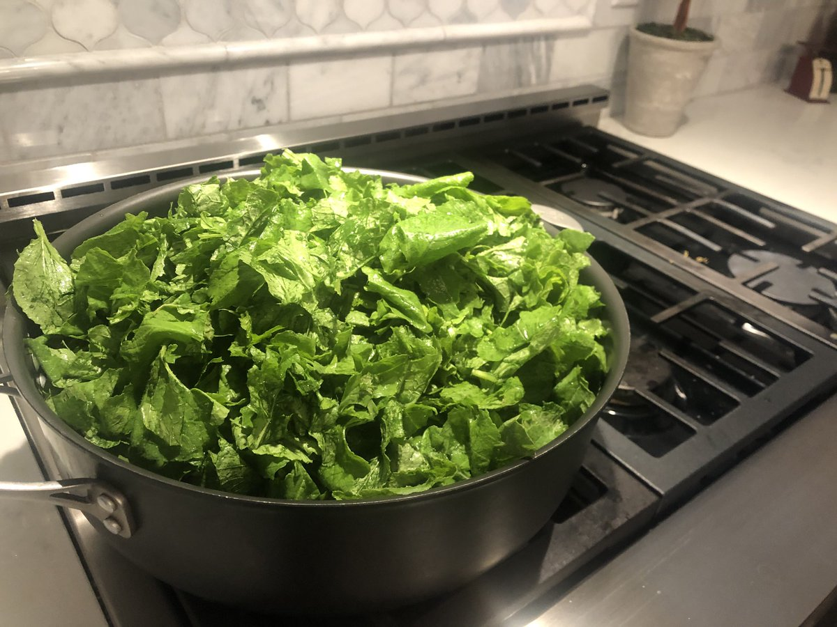 Day just keeps getting better. First batch of turnip greens.