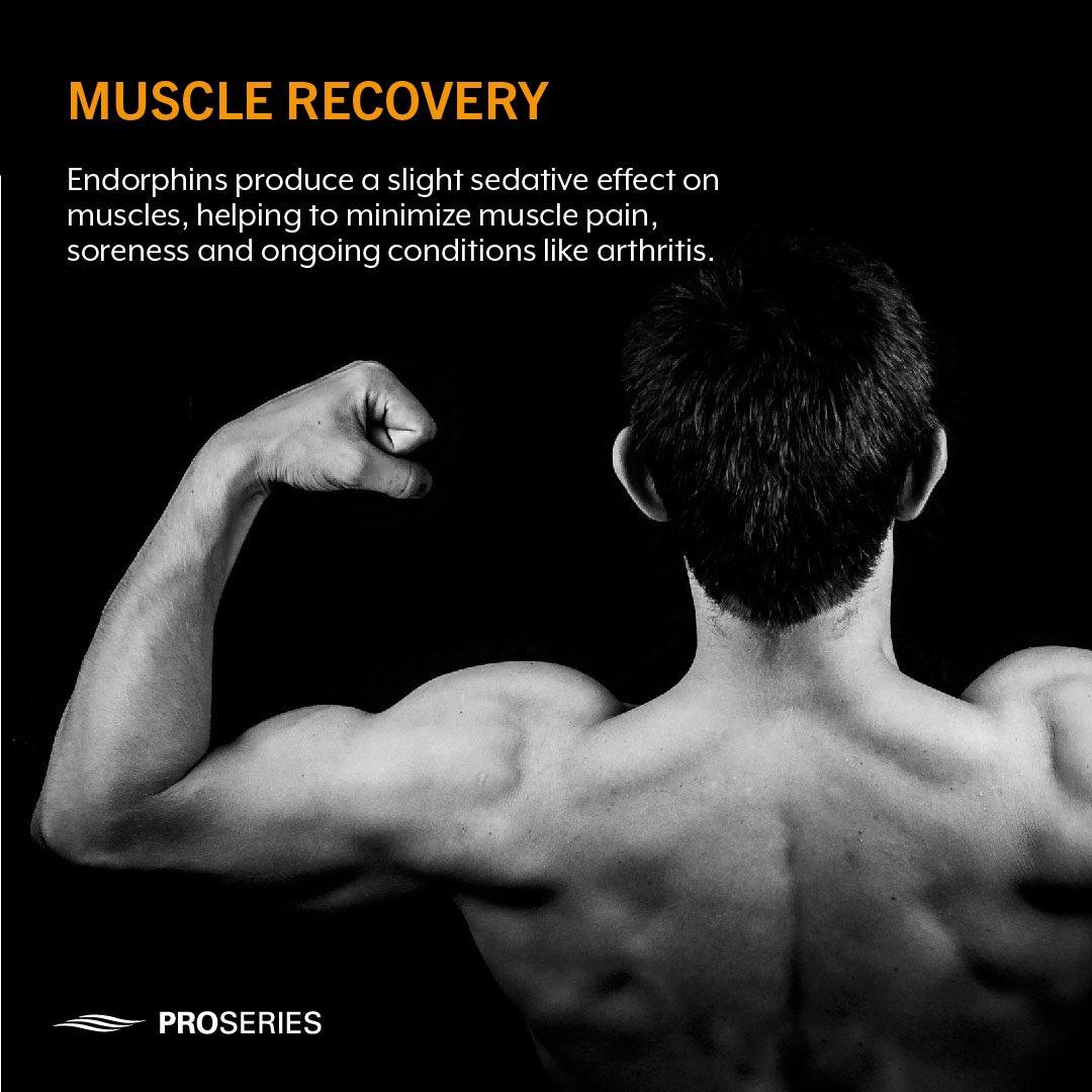 Infrared Sauna🔥 + Endorphins😅 = Muscle Recovery💪🏽  #Infraredsauna #Endorphins #MuscleRecovery #musclepain #arthritis #athleterecovery #fitness #athlete #homesauna #inhomesauna #drysauna https://t.co/DAXgVo3NRc
