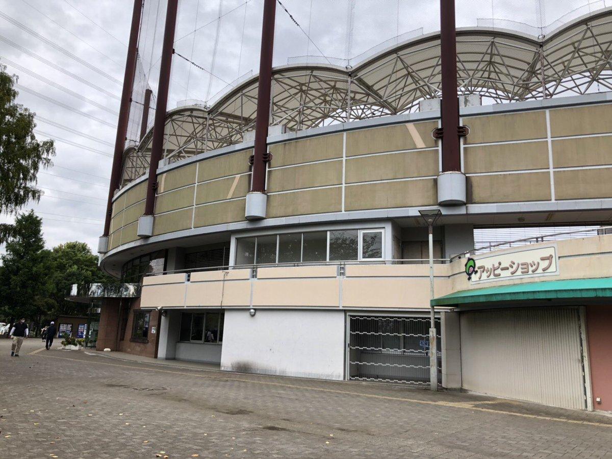 速報 野球 大会 高校 県 埼玉 秋季
