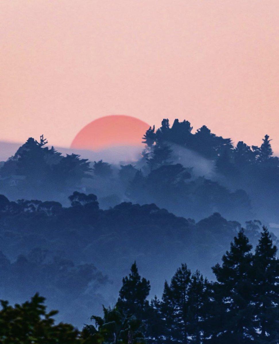 Mill Valley  Todays California Photo! - by Ian Rizzari https://t.co/Qy3U33kLfY