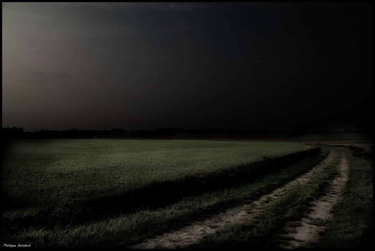 Gesnes le Gandelin (Sarthe) #gesneslegandelin #Sarthe #lasarthe #sarthetourisme #labellesarthe #labelsarthe #Maine #paysdelaloire #paysage #nature #campagne #rural #ruralité #gondard #route #road #OnTheRoadAgain #graphique #ombre #lumière #alpesmancelles #ciel #sky #light #chemin https://t.co/J6zRATuFsC