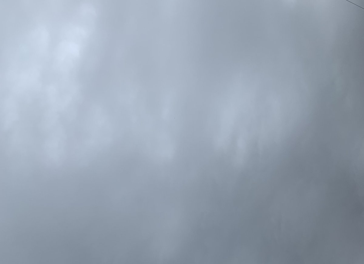 今日は空の日なのね😊コロナで延びていた息子が就職のため空の日にド田舎から上京...心配は尽きないけど動きだした息子 帰る場所はあるから安心して健康に注意しながらがんばれー٩(ˊᗜˋ*)و#空の日 #ANA#羽生クラスタ空部#羽生結弦選手が今日も元気で幸せでありますように