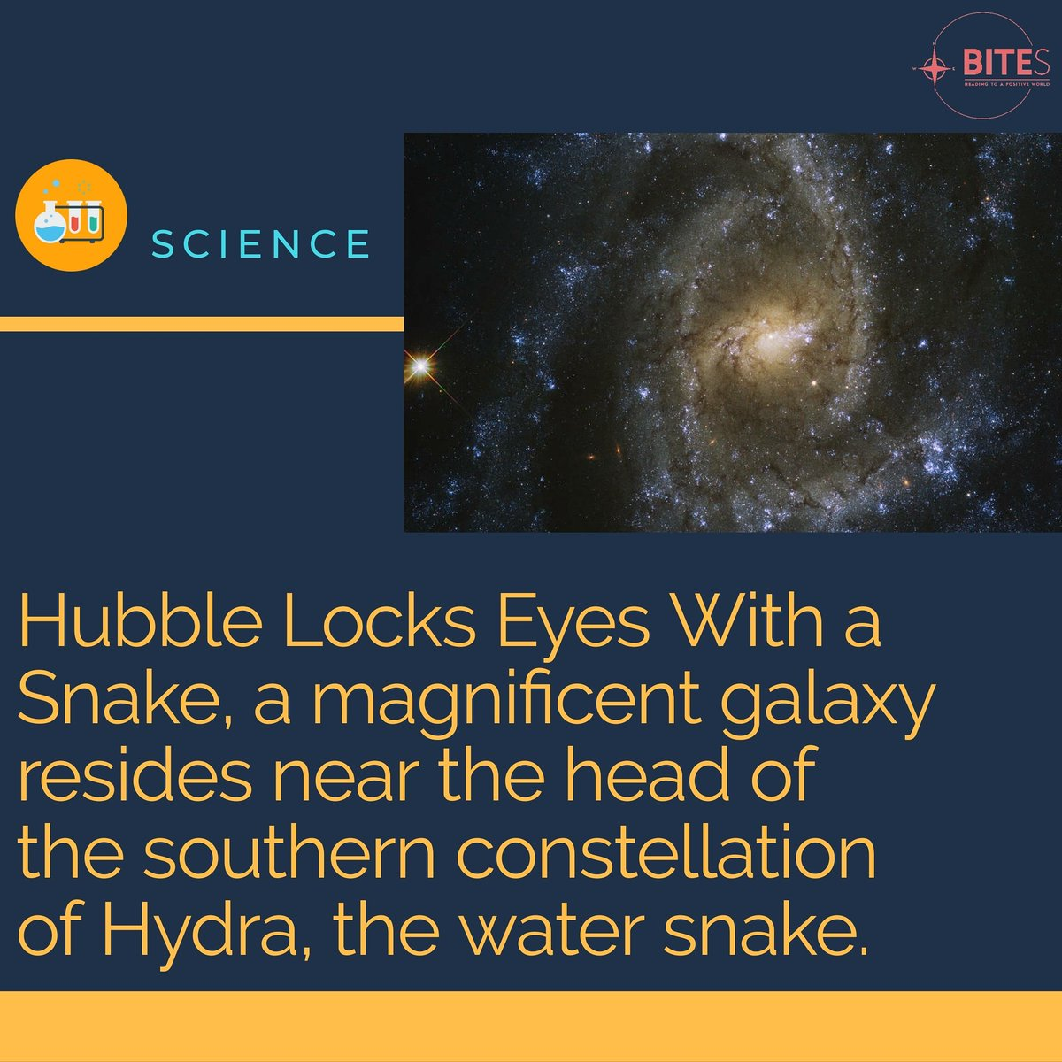 @DigitalTrends This stunningbarred spiral galaxy, with a width of just over half that of the Milky Way, is brilliantly featured in this image taken by theNASA/ESA Hubble Space Telescope. #nasa #galaxy #discovery #hubble #watersnake  https://t.co/Sv1kkP8Aj9 https://t.co/95rncVTupR