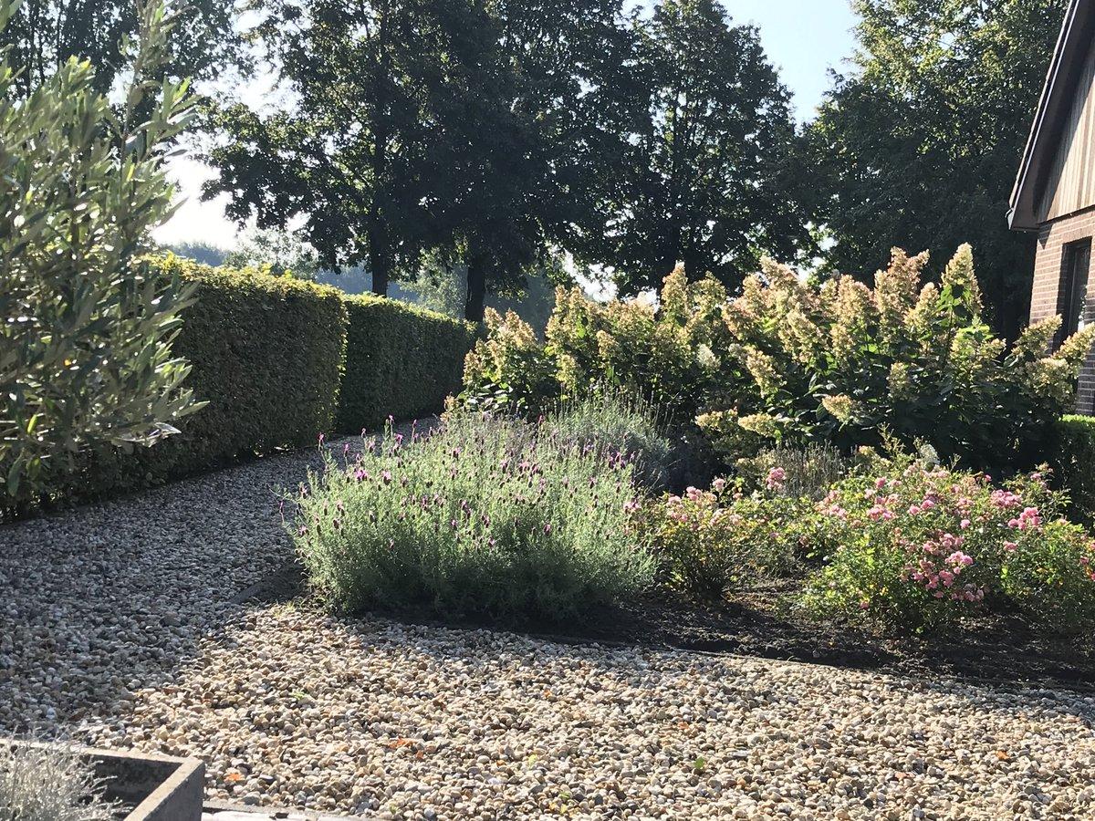 20 September, koffie in de tuin....Life is good. https://t.co/ejbejyTiaV