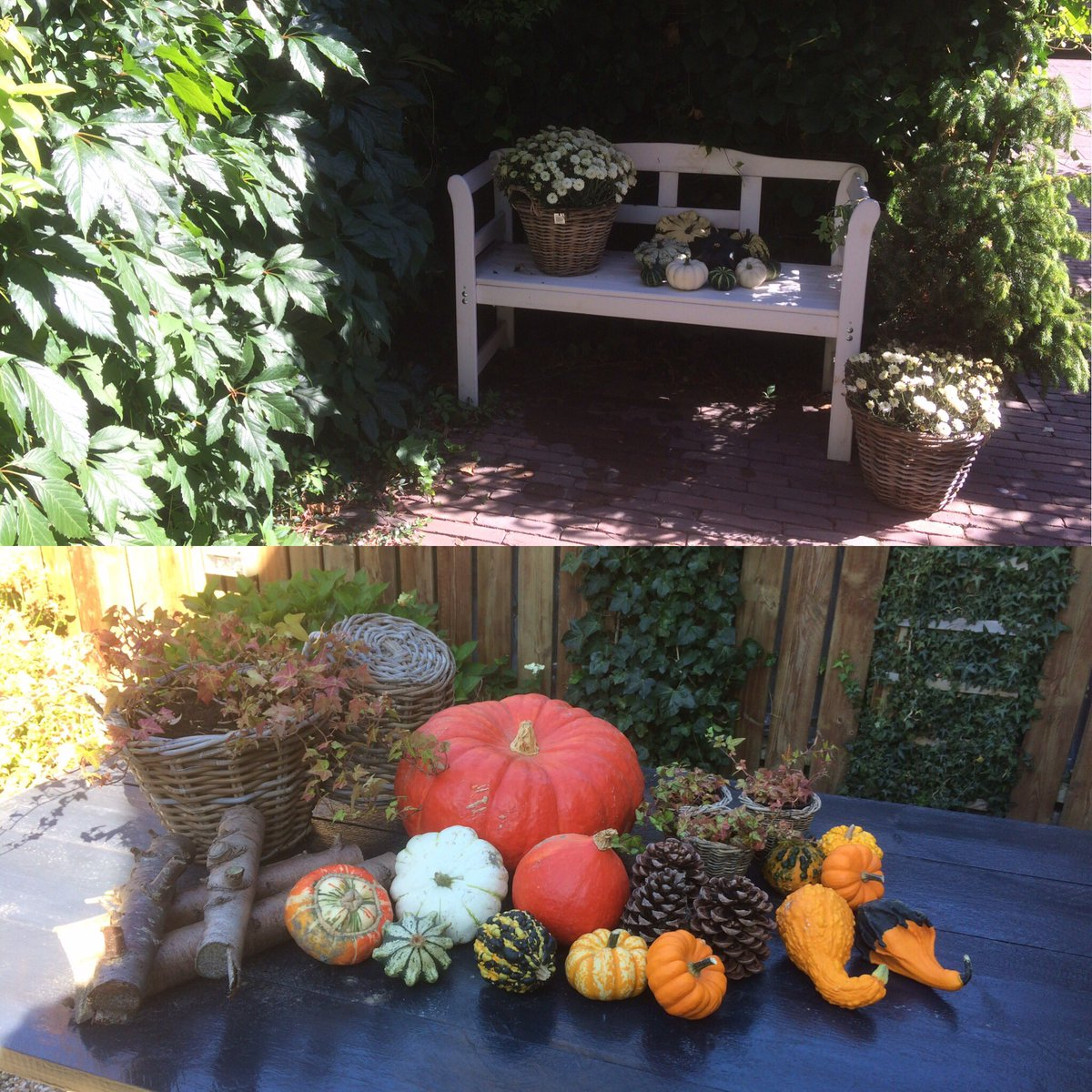 Heerlijk weer ☀️, #tuin gedaan, ingericht met #kalebassen en #ramen gewassen. Weer een gezellig #uitzicht vanuit #huis ❤️#genieten https://t.co/PnFi3IMyGB