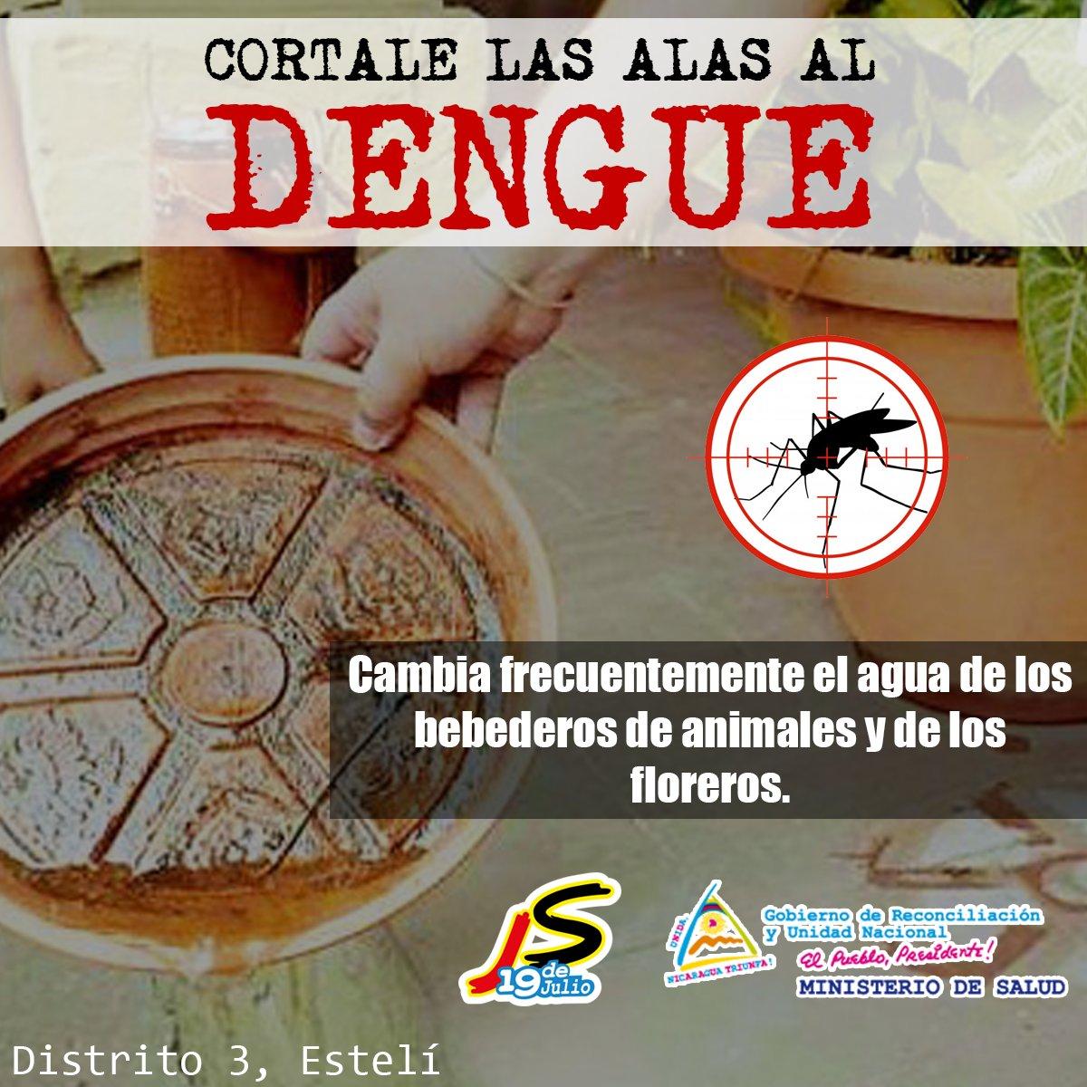 #20septiembre ✌  #Nicaragua Recordemos que también debemos de luchar contra el #Dengue siguiendo las recomendaciones del #Minsa podemos prevenir la reproducción del mosquito, excelente iniciativa de l@s chaval@s de Juventud Sandinista🔴⚫  #TeamWhiteLion #2021PatriaBenditaYLibre https://t.co/HGgoviRao9