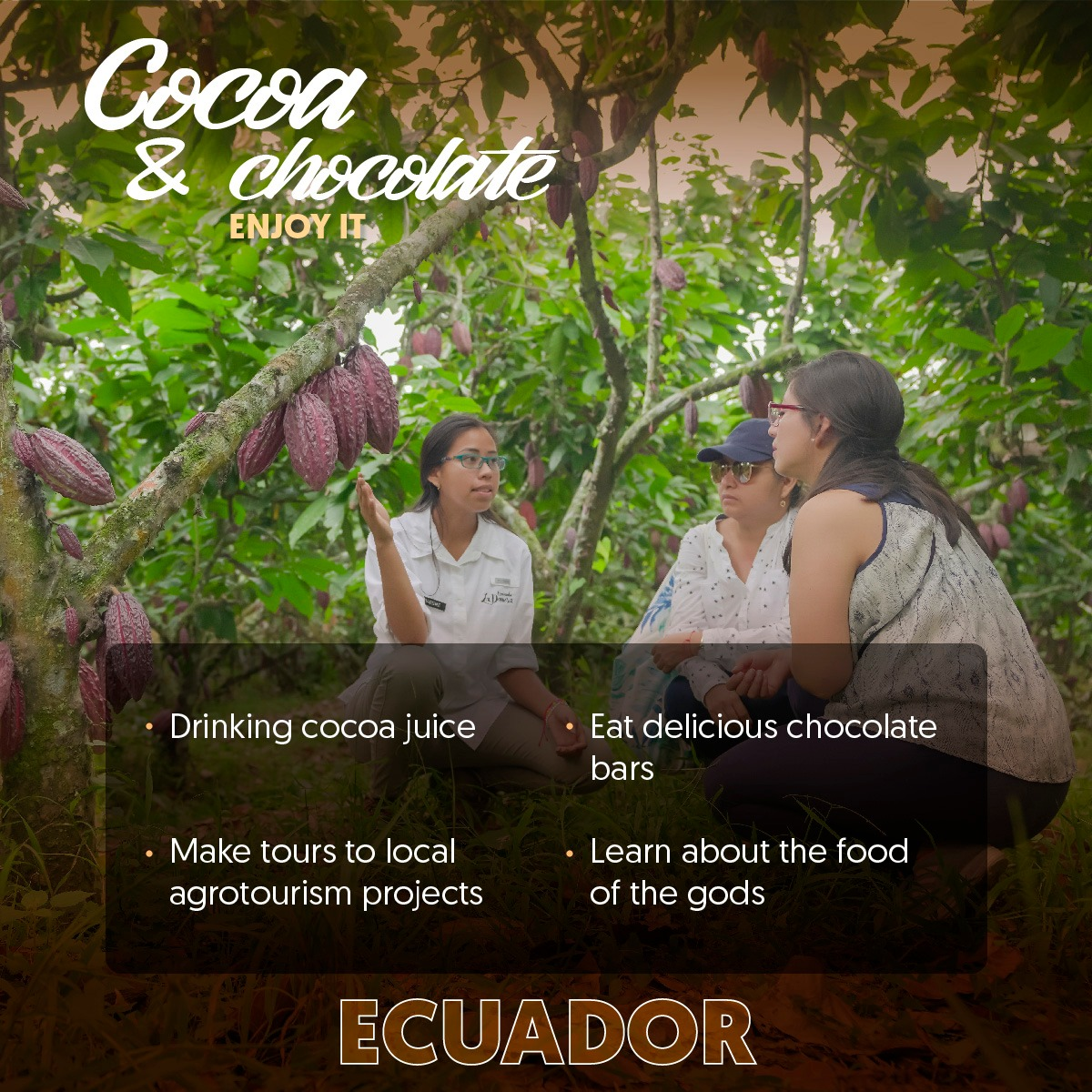 Did you know that the original cacao tree first grew on the Ecuadorian Amazon? The first vestiges dated back to 3000 b.C.  #Chocolate #Nature #Ecuador https://t.co/UGlo2GpNVB