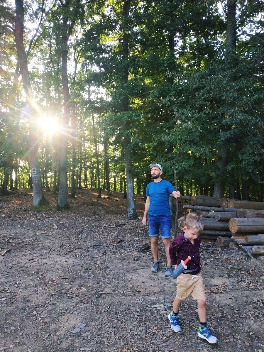 Mladý Bilbo a ne tak mladý Gandalf hlídají slunce uvězněné mezi kmeny stromů ❤️ https://t.co/KPBee4UyGZ